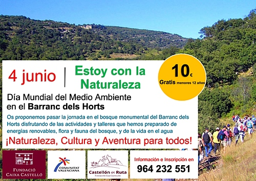 CARTEL Dia mundial medio ambiente CASTELLON EN RUTA COMUNIDAD VALENCIANA